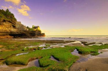 Explore Surga Tersembunyi di Pulau Dewata